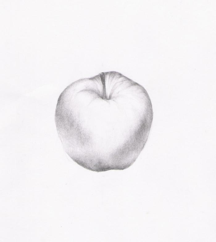 Jablko Studie Grafika Evelyn Humanart Cz