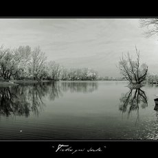 Fotografie - silence at water