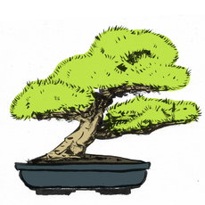 Grafika - bonsai