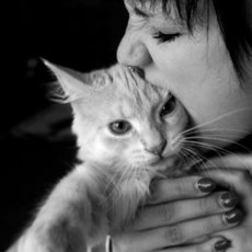 Fotografie - Cat love