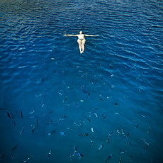 Fotografie - Swimming with The fishes
