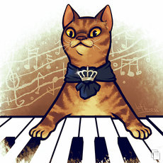 Grafika - keyboard cat