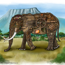 Grafika - Elephants anatomy